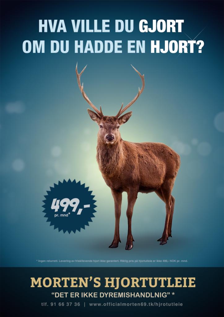 Mortens-Hjortutleie-Sigurd